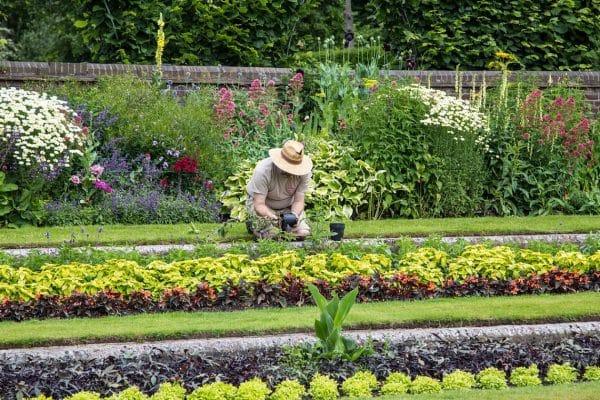 Pourquoi faire appel à un paysagiste pour l'entretien de jardin ?